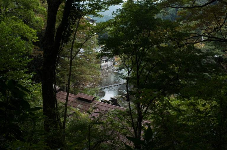 Arcana Izu: Миадзаке, лисы-демоны, дом над водопадом и французская супер-еда.