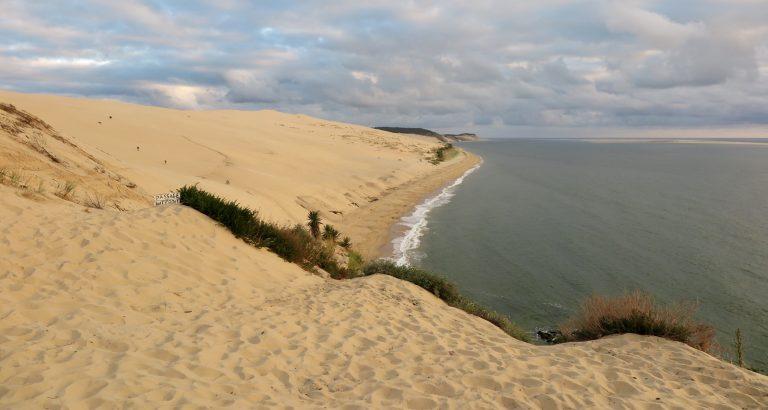 La c(o)orniche: устрицы в дюнах.